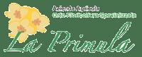 La Primula vendita piante orticole, rose antiche, alberi da frutto, piantine orto